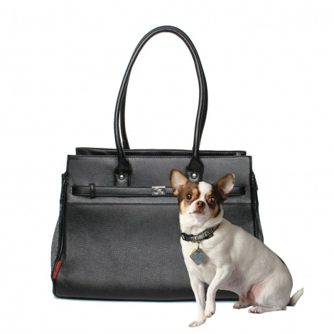 Black Pebbled, with Chihuahua